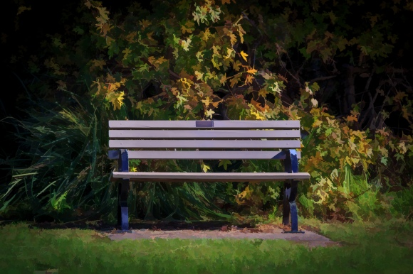 The Empty Bench