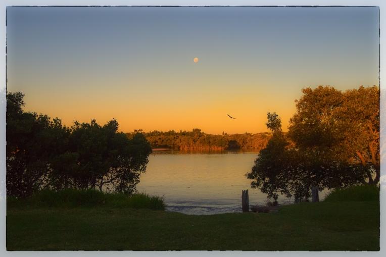 Orange Moon Rising Over the Lake