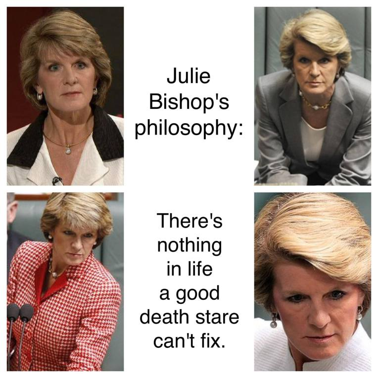 Julie Bishop's Death Stare