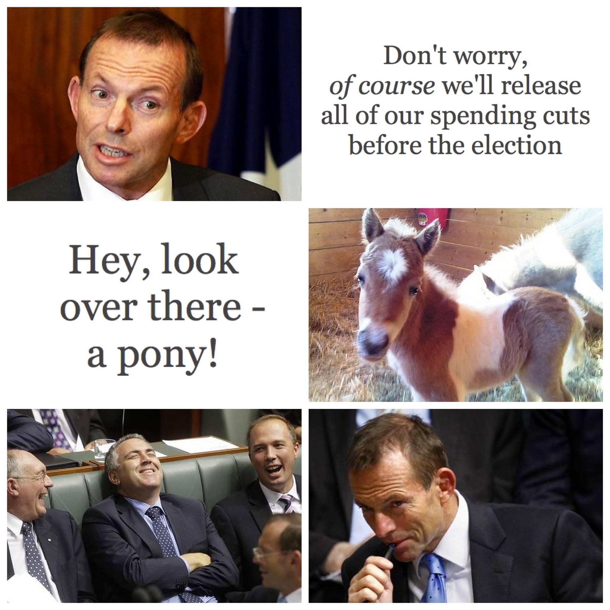 Tony and the Pony
