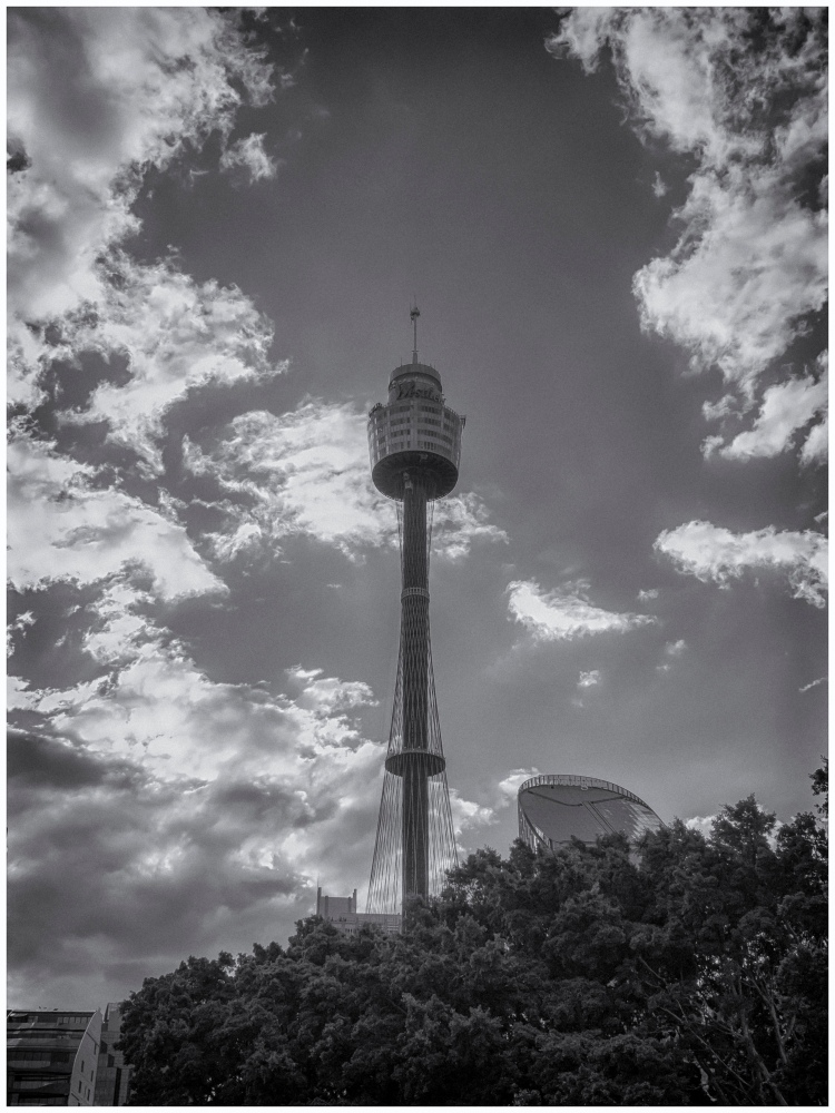 Sydney Tower in Black & White