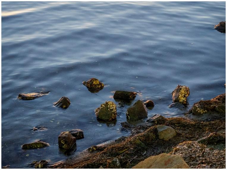 Dusk on the Lake