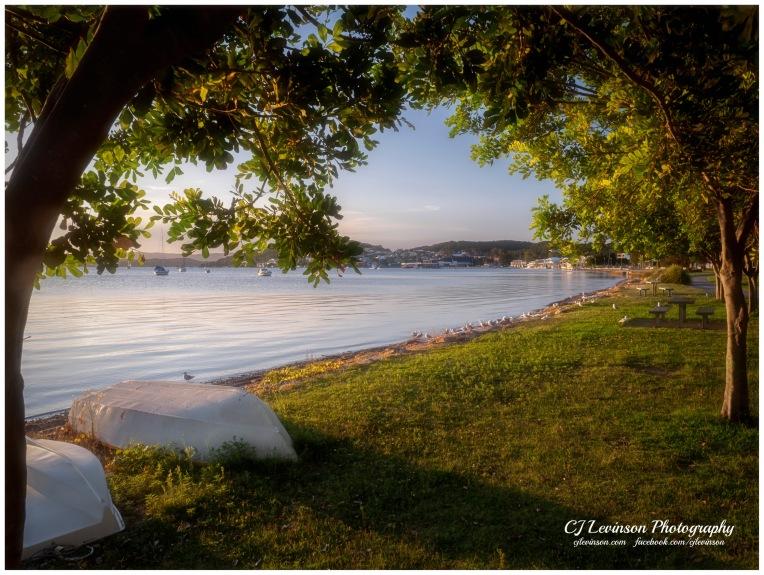Belmont Lakefront