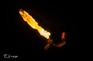 Playing With Fire 9