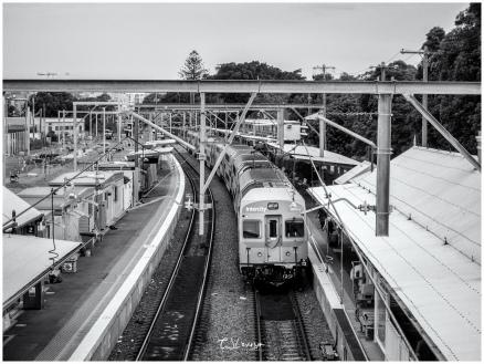 Train at Hamilton Station