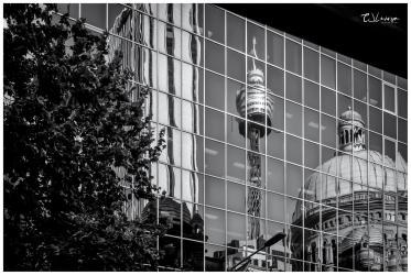 Sydney Reflection