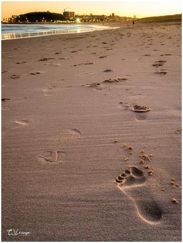 Footprints on Nobby's Beach