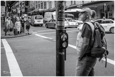 Pedestrian on Pitt Street