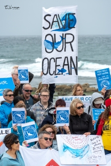 Save Our Coast-18